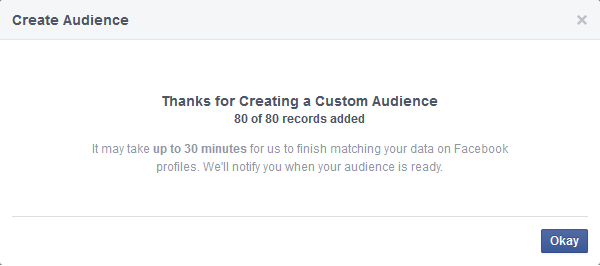 Thanks for Creating a Custom Audience